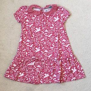 Girls Mini Boden Jersey Lace Collar Dress 4-5